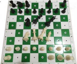 ajedrez para invidentes o ajedrez para ciegos